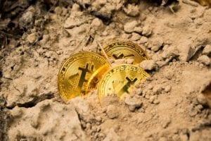 Koin Crypto